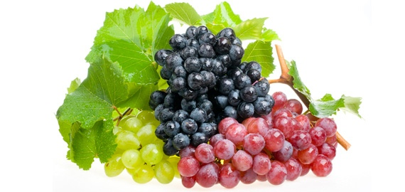 grapes-bunches_570