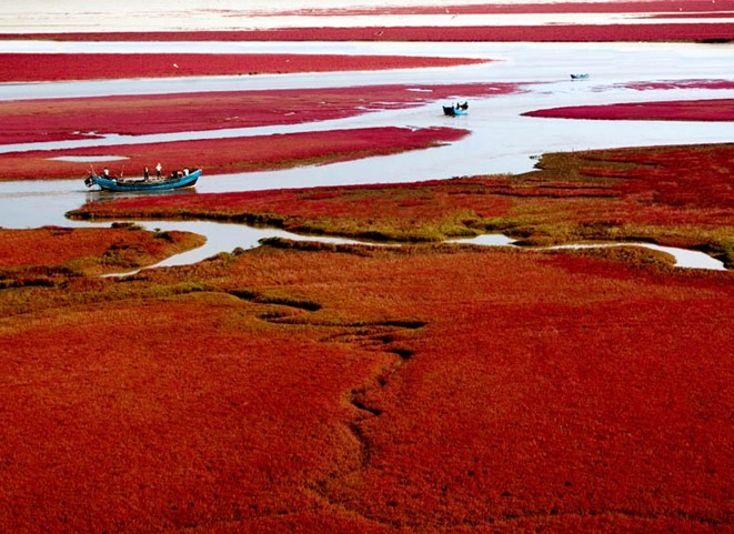 Playa Roja en China. Foto de chintravelgo